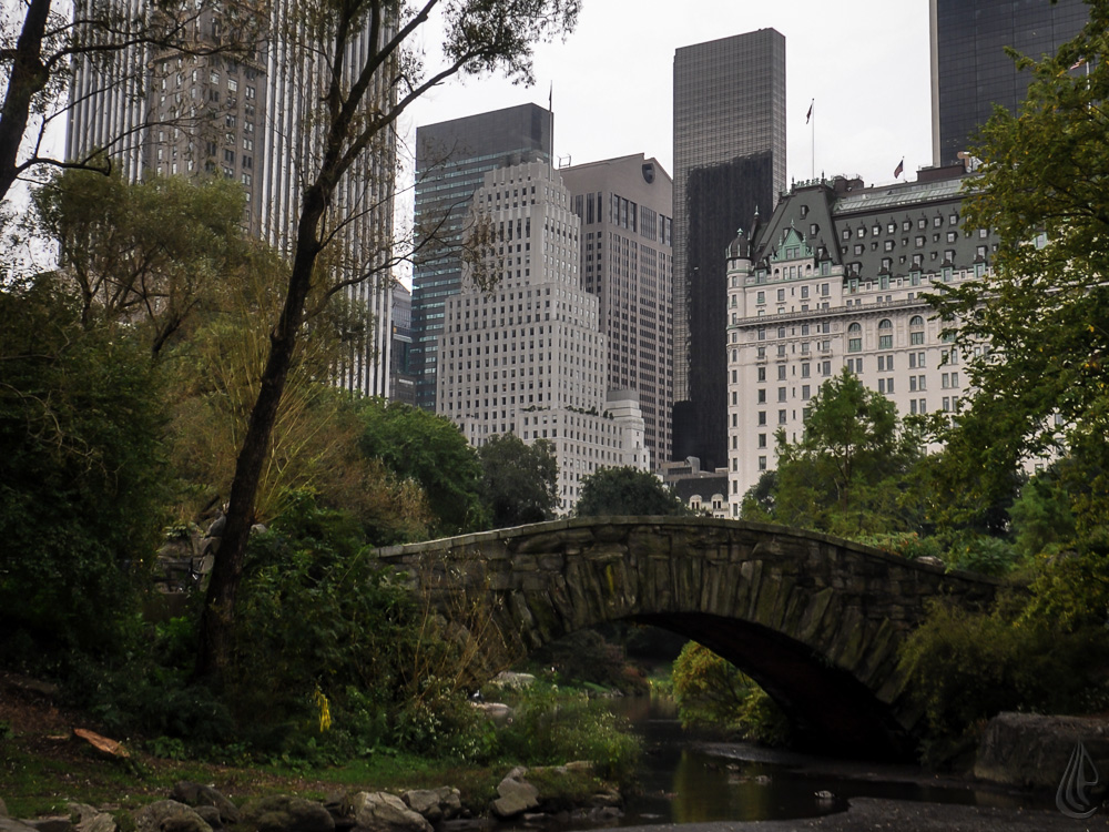 Landscape / Urban