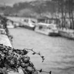 Seine - Artistic Photography, Paris