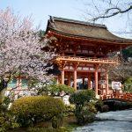 Japanese Postcard - Shinto Shrine, Kyoto, Japan